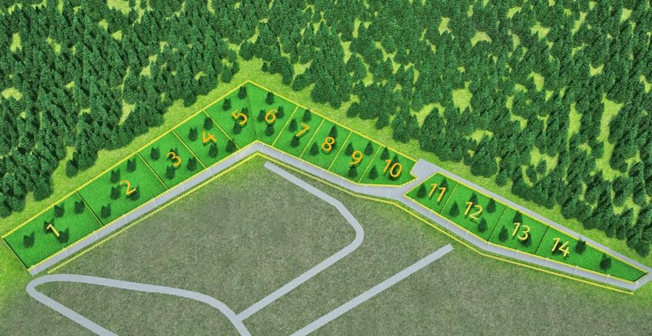 Генеральный план LESO Парк