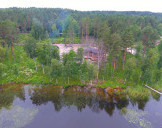 Мишкин лес