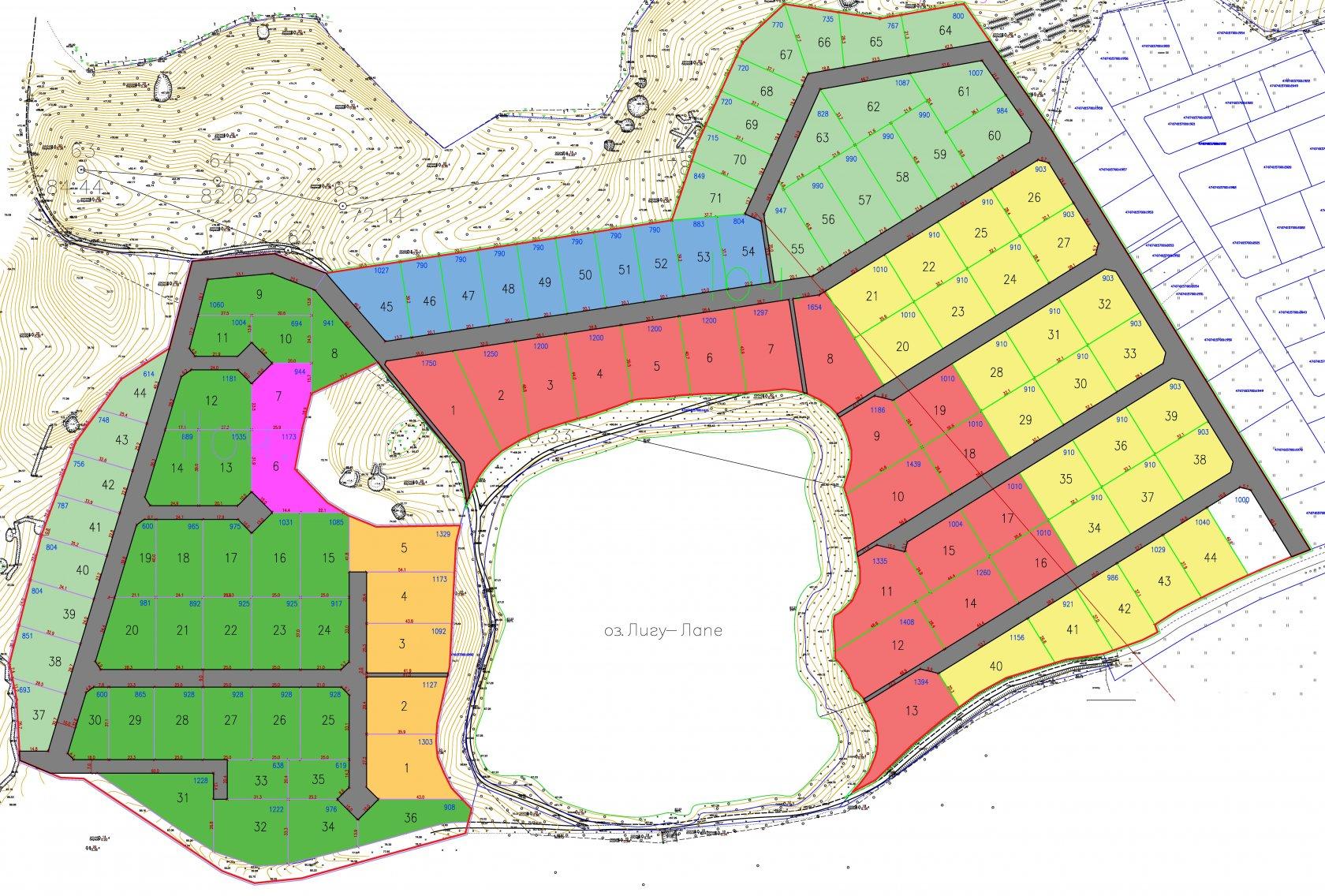 Генеральный план Лесное озеро