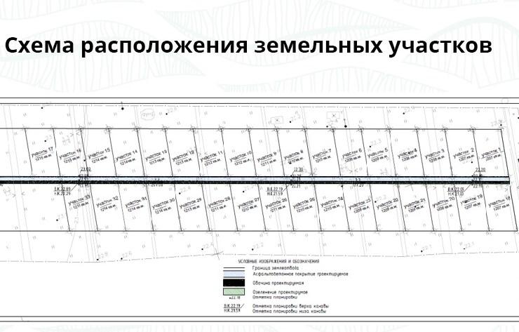 Генеральный план Петродворцовые усадьбы
