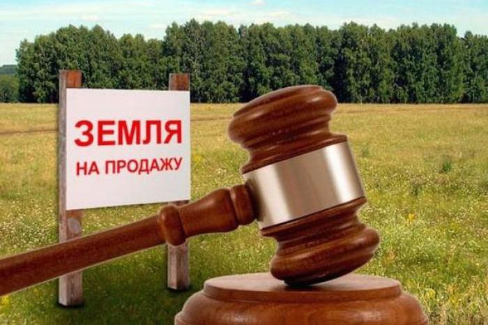 В Пушкине на аукцион выставлены земельные участки