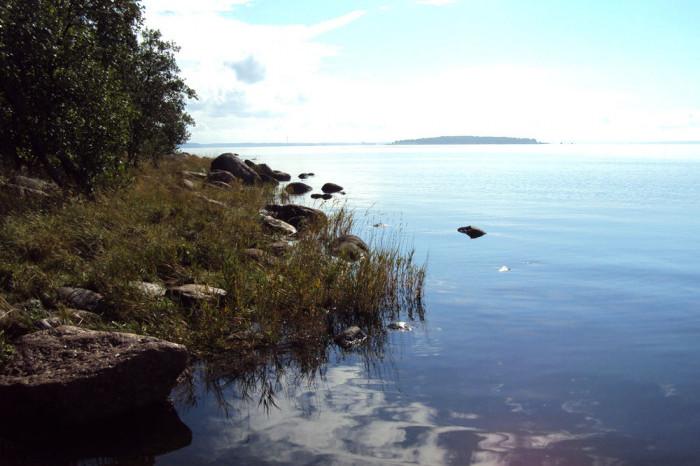 На территории Ленинградской области появится новый заповедник