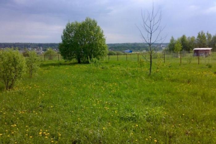 """Началась реализация недвижимости в коттеджном поселке """"Грузино парк"""""""