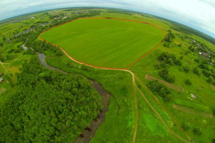 В четырех районах Ленобласти можно будет получить гектар земли